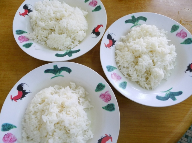 Three plates of rice (duh)
